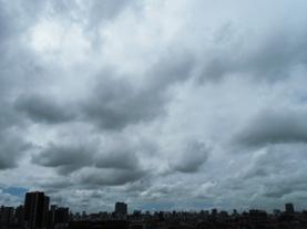 19.8.13*新宿の朝*5.0-168.jpg