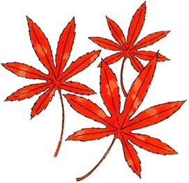 2019.10.1*紅葉*33-208.8.jpg