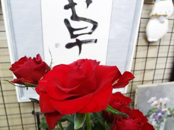 2019.10.13*赤いバラ*38.4-429.9.jpg