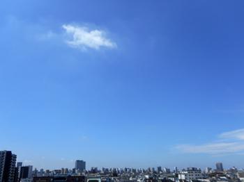 21.7.10*久し振りの青空30-437.7.jpg