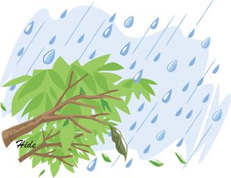 7.13*雨が止みません!33-249.jpg