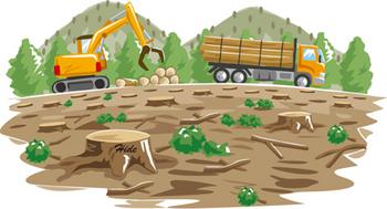 7.20*森林の乱伐採には困る。45-312.2.jpg