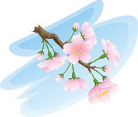 サクラ咲く*30-101.2.jpg