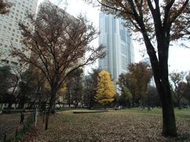 公園2*4.3-166.0.jpg